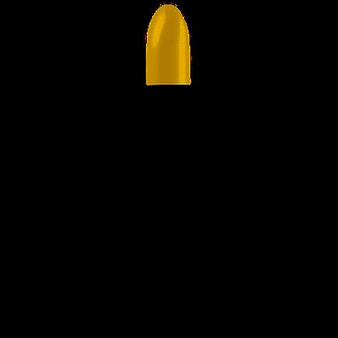 Antipodes Kiwi Seed Oil Lip Conditioner